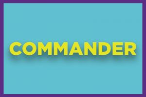 Car Wash Package - Commander